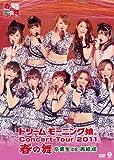 ドリーム モーニング娘。 コンサートツアー2011春の舞 ~卒業生DE再結成~[DVD]