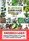 葉っぱでわかる造園樹木図鑑 造園技能検定に出題される170樹種を掲載 画像