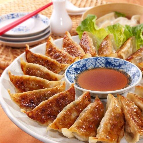 ナンチク 鹿児島 黒豚 餃子(15g×24個)