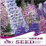 卸売チェ・バッグバルコニー鉢植えの花の種、シャルドネのデルフィニウムの種子30粒子