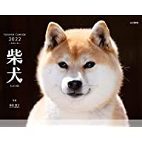 【Amazon.co.jp 限定】カレンダー2022 柴犬 (月めくり・壁掛け)【特典データ:柴犬のPC壁紙画像】 (ヤ…
