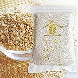 【お試し半額セール】 金のいぶき 28年宮城県産玄米 玄米食 玄米 健康増進