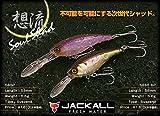 JACKALL(ジャッカル) シャッド ソウルシャッド SP 58mm 5.5g HLキンクロ