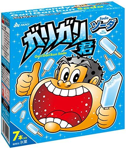 赤城乳業 ガリガリ君ソーダ 63ml×7本×6箱