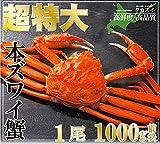 超特大 ズワイガニ 姿 1kg ジャンボ ずわい蟹