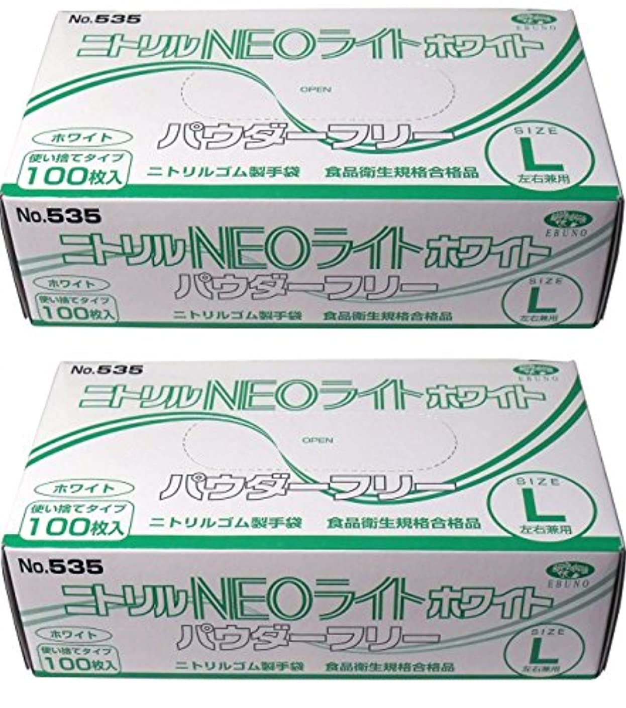 化学薬品成果なかなかニトリル手袋 パウダーフリー ホワイト Lサイズ×2セット