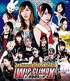 豆腐プロレス The REAL 2017 WIP CLIMAX in 8.29 後楽園ホール[Blu-ray]