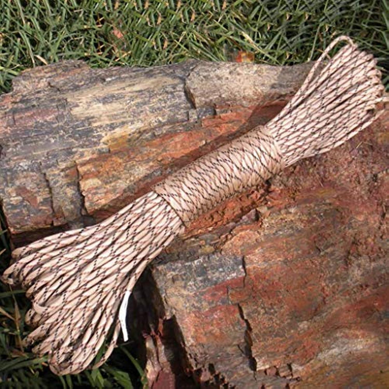 よろしく矢風変わりなロープアウトドアクライミングロープ、30メートル物干しロープ屋外掛け布団乾燥キルト防風滑り止め安全ロープ、7色(カラー:C)