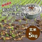 【自宅用】[玄米]安くておいしいお米 新潟県岩船産コシヒカリ 完全無農薬米[5キロ]