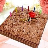 チョコレートケーキ 母の日ケーキ[凍]30年変わらぬおいしさ ココア生地とガナッシュクリームの8層サンド