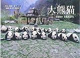 大熊猫—赤ちゃんパンダ