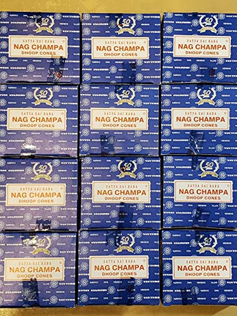 テレビ局アンテナ議論するお香 ナグチャンパ コーンタイプ 12箱