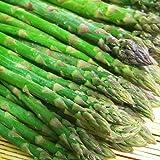 北海道名寄産グリーンアスパラ 大人気の訳あり 1kg M~Lサイズ