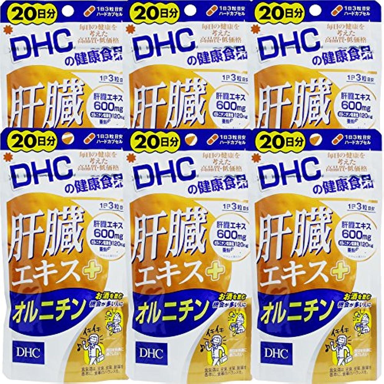 増強ペイント燃やす【まとめ買い】肝臓エキス+オルニチン20日60粒 ×6個