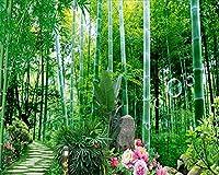 Bzbhart カスタム壁紙家の装飾竹パス背景壁画リビングルームの寝室の背景装飾壁画3d壁紙-120cmx100cm