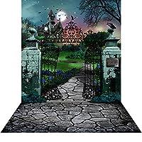 写真バックドロップwith床–House on Haunted Hill–10x 20ft。シームレスなファブリック