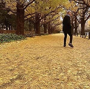 或る秋の日(受注生産限定アナログ盤)[Analog]