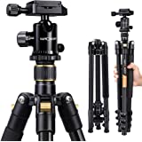 Lightweight Aluminum Camera Tripod, K&F Concept 62-Inch Compact Travel DSLR Tripod Portable Tripod with Ball Head and Carry B