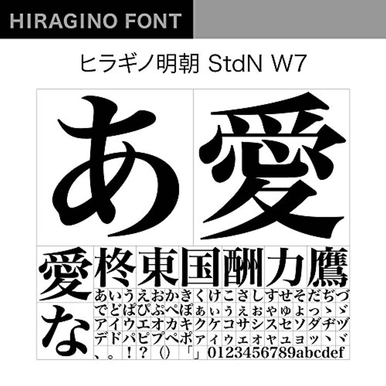 闘争有罪動詞OpenType ヒラギノ明朝 StdN W7 [ダウンロード]