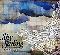 An Airplane Carried Me To Bed by Sky Sailing (2010-07-27)