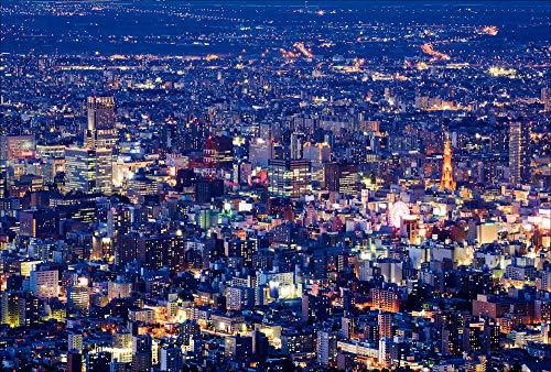 【Amazon.co.jp 限定】藻岩山より望む札幌市街 ポストカード3枚セット P3-159