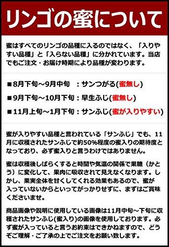 山形県産 サンふじ りんご 10kg (ご家庭用/22玉-46玉入り/生食可)