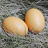 6Pcs Wooden Faux Fake Eggs Children Play Kitchen Game Food Toy - Log Color