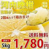 河内晩柑 みかん 和製グレープフルーツ 訳あり 5kg S?3L 送料無料 2箱購入で1箱おまけ 熊本県産 文旦 ジューシーオレンジ 美生柑