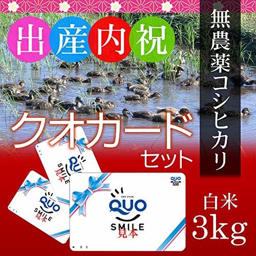 【出産内祝い・グループへのお返しに】新潟コシヒカリ(アイガモ農法・無農薬米) 3kg 贈答箱入り+クオカード1000円分×10枚セット