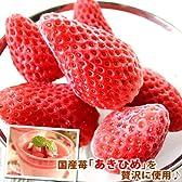静岡県産 ひんやりいちご(冷凍苺)1kg入
