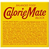 大塚製薬 カロリーメイト ブロックチョコレート 4本×30個
