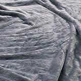 毛布 mofua(モフア)プレミアムマイクロファイバー毛布 Heatwarm発熱 +2℃ タイプ シングル グレー 60100113