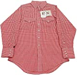 GINGHAM CHECK WESTERN SHIRTS(ギンガムチェックウエスタンシャツ) (15.5インチ(Mサイズ), RD(レッド))