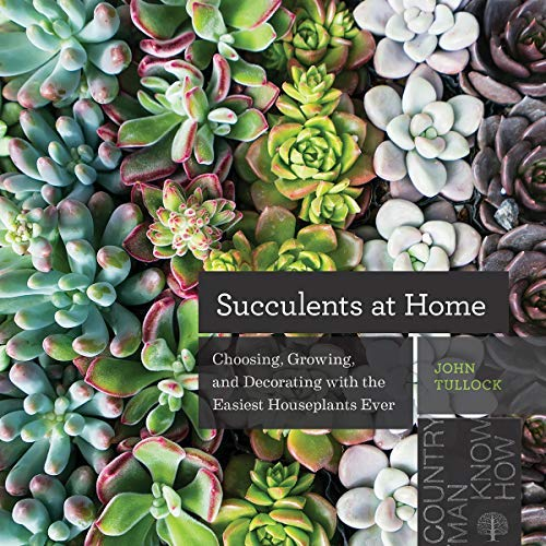 Succulents at Home: Choosing, Growing, and Decorating with the Easiest Houseplants Ever (English Edition)