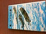 青いイルカの島 (ジュニア・ライブラリー)