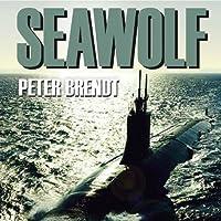 Seawolf: U-Boot-Kampf Im Persi