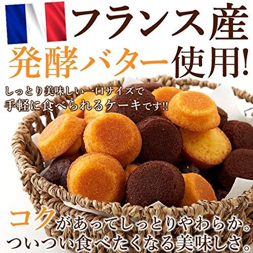 フランス産発酵バター プチケーキ2種(プレーン味、チョコ味)50個 国産もち米あられ1個セット