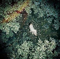 天月 -あまつき-「君の知らない物語」のジャケット画像