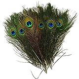 30枚入り 天然 羽根 目玉羽 装飾用の羽根 孔雀の羽 ヘアアクセサリ