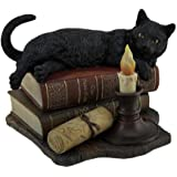 Lisa Parker's The Witching Hour Black Cat On Books Statue