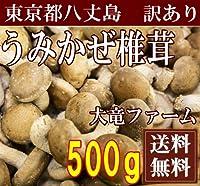 [GW明け5月7日より出荷再開]海風しいたけ 訳あり品 500g(東京都 大竜ファーム)八丈島野菜・無農薬・無化学肥 ふるさと21