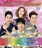 ワンダフル・ラブ~愛の改造計画~ BOX1 (コンプリート・シンプルDVD-BOX5,000円シリーズ)(期間限定生産) 画像