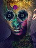 The Insulated World(完全生産限定盤)(DVD付)