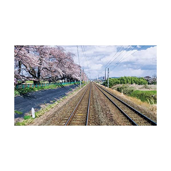 快速 仙台シティラビット 4K撮影作品 桜の東...の紹介画像4