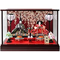 雛人形 ケース入り親王飾り 間口55×奥行28.5×高さ38.5cm ワイン塗枠ガラスケース 3296