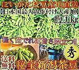 産地直送 新潟茶豆 1kg 秀品 A品 にいがた西蒲原郡黒埼町エリア中心 高級 枝豆 茶豆