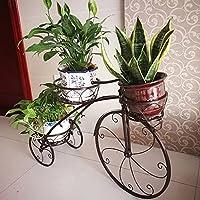 YQCS●LS ヨーロッパのフロート植物の花のフレーム錬鉄の多層フロア鉢植えの植物の棚多機能植物収納ラック (Color : C)