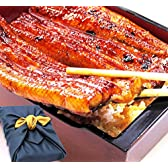 ギフト 鰻の蒲焼(特大蒲焼180~200g 2枚、カット蒲焼55~60g 2枚) 風呂敷包みセット 国内産うなぎ