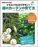 NHK趣味の園芸 イラストでわかりやすい! 緑のカーテンの育て方 (生活実用シリーズ)