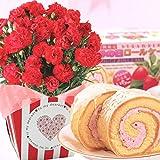 赤カーネーション5号鉢と苺ロールケーキのセット 花とスイーツ 母の日ギフト -